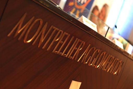 Dans la salle du conseil de l'agglomération de Montpellier le 30 mai 2012 (photo : J.-O. T.)
