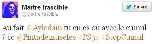 Judith Capelier, porte-parole du PS, s'adresse à la députée Anne-Yvonne Le Dain via Twitter sur le non-cumul des mandats (copie d'écran)