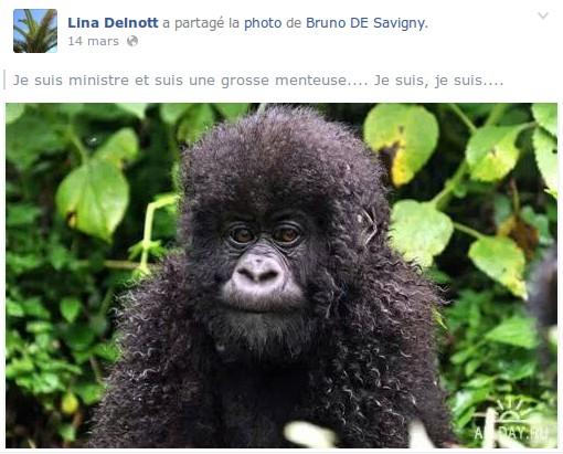 Sur la page Facebook de Lina Delnott, élue de la liste de Stéphan Rossignol (UMP) (capture d'écran)